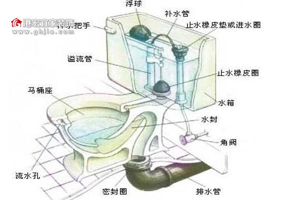 坐式马桶结构图,坐便器的工作原理全介绍